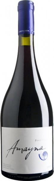 "Вино Vina Garces Silva Limitada, ""Amayna"" Pinot Noir, 2010"