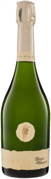 Игристое вино Ayama, Blanc de Blancs, 2010