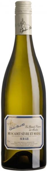 Вино Muscadet Sevre et Maine AOC, 2015